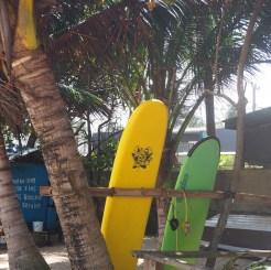 Hikkaduwa sri lanka surfen