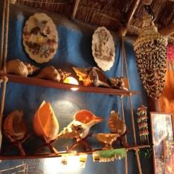 Isla Holbox Mexico schelpen