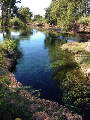 Jamaica hidden natuurwonder