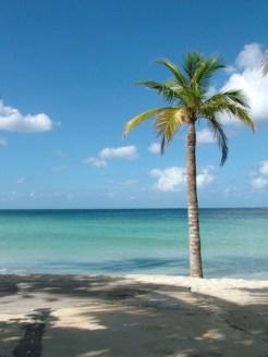 Jamaica strand negril