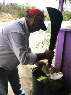 Kokosnoot hakken asis fruitswagen