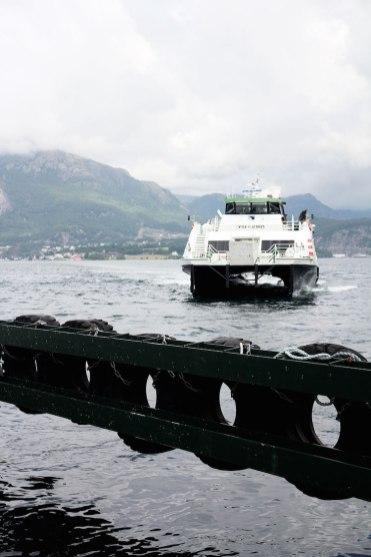 Lysefjord ferry