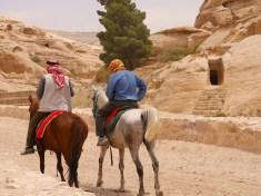 Paarden onderweg van Petra