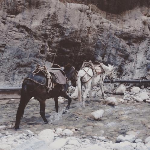 Samaria gorge kreta