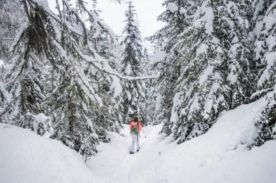 Sneeuwwandelen in oost tirol
