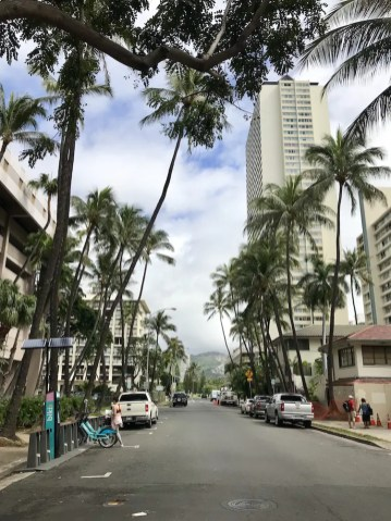 Straat in Hawaii palmbomen