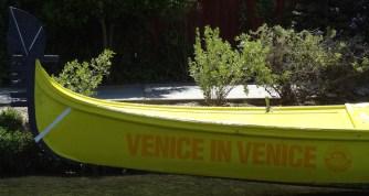Venice in venice