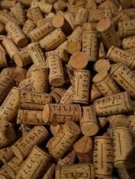 Vipava wine tilia slovenie