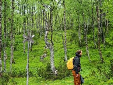 Zomer lapland hiken bij Ammernäs