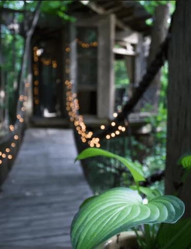 detail boomhut op airbnb