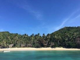 eiland palmbomen filipijnen