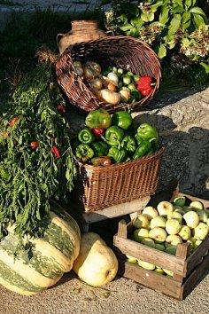 eten festival portugal bioligisch