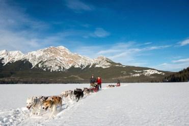 hondenslee in canada