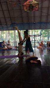 hoofd staan yoga opleiding thailand