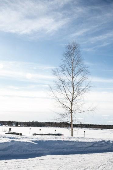 ijs landschap lapland