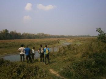jungle walk nepal