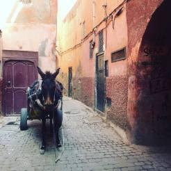 marrakech-souks-straatjes