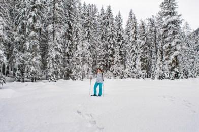 oost tirol Sneeuwwandelen
