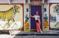 udaipur india streetart