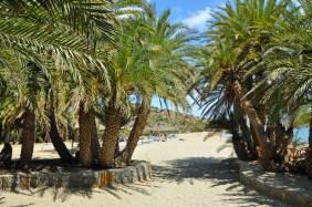 vai kreta mooiste strand