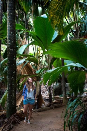 vallee de Mai korte hike praslin seychellen