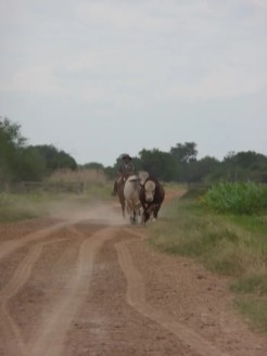 weg paraguay