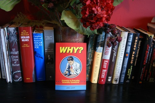 Why?: Answers to Everyday Scientific Questions by Joel Levy