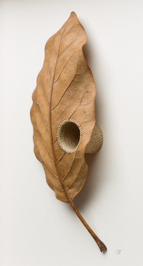 Susanna Bauer crochet leaf sculpture