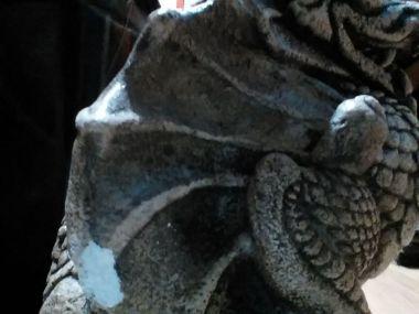 Gargoyle Before