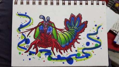 """Mantis Shrimp Copic Markers on Strathmore Watercolor Paper 5"""" x 7"""""""
