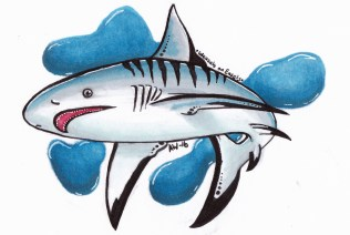"""Shark Sticker Copic Markers on Strathmore Watercolor Paper 3"""" x 4"""" Sticker"""