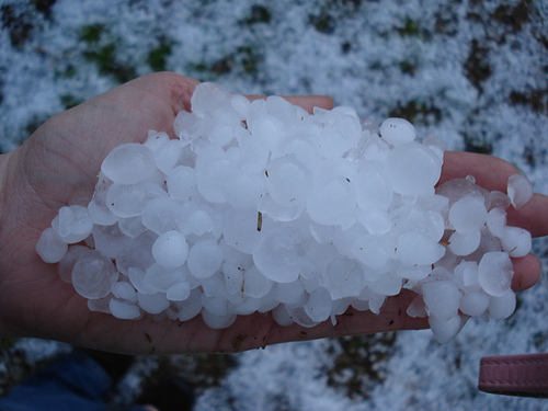 Hail Pictures - February 18, 2008
