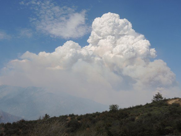 Pyrocumulus cloud rising over California's Rough Fire in Sierra National Forest and Kings Canyon National Park. August 2015. Credit: The Weather Gamut.