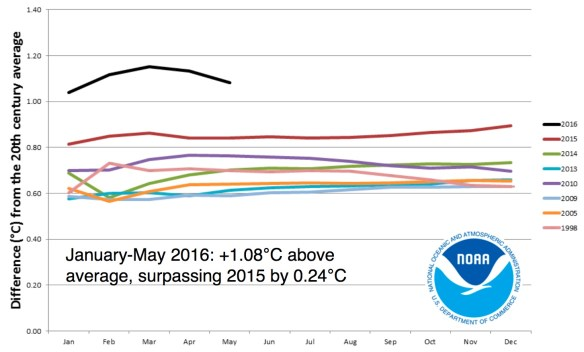 2016 is on track to being the next warmest year on record. Image credit: NOAA