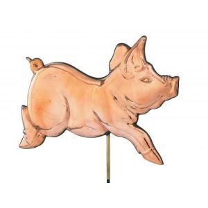 Romping Pig