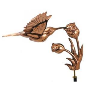 WV350P HUMMINGBIRD