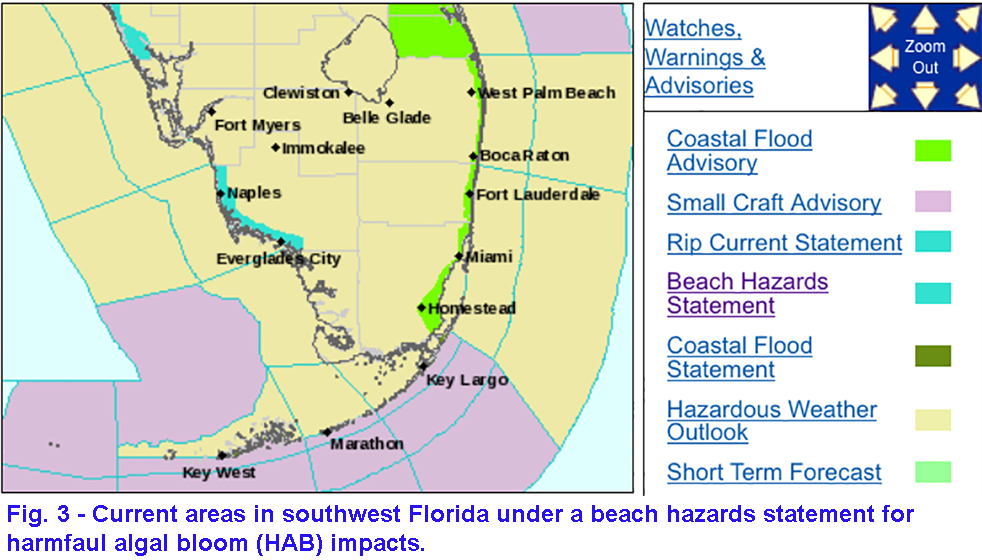 Red tide still affecting many southwest Florida beaches (H