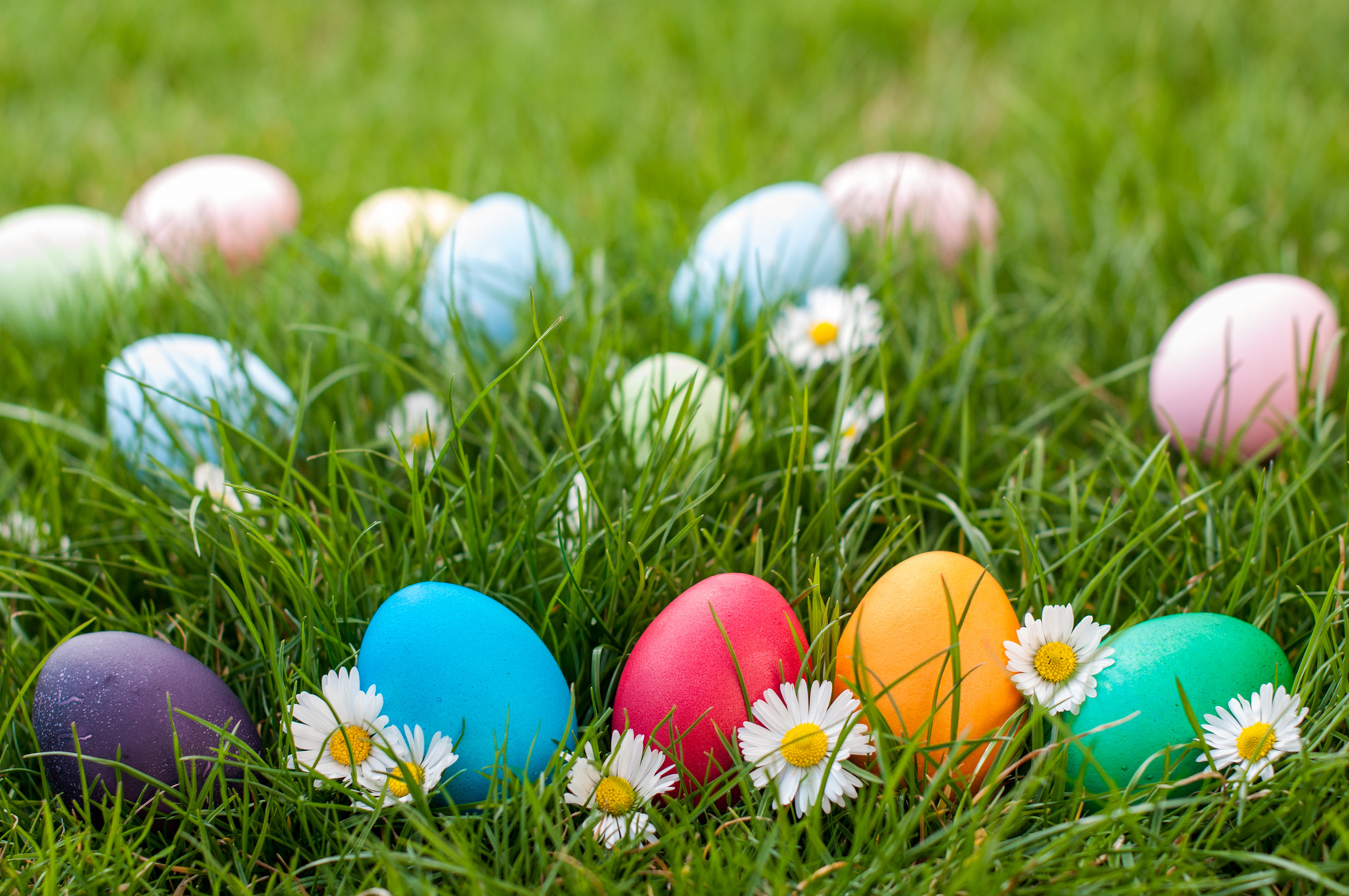 Checkout These Local Easter Egg Hunts In Arcadia