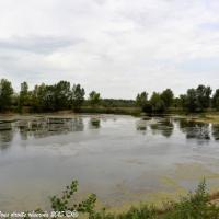 Étang des Charmilles de Mesves sur Loire - Plan d'eau