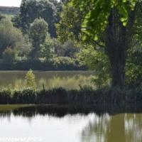 Étang de la Fermeté - Plan d'eau de la Fermeté