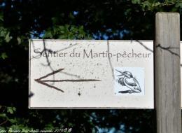 Étangs de Baye et Vaux sentier martin pêcheur