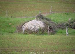 Source avec son dôme de pierre