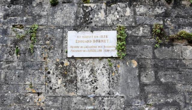 Botaniste Jean-Baptiste Bornet