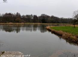 Canal du Nivernais au lieu dit la Papeterie