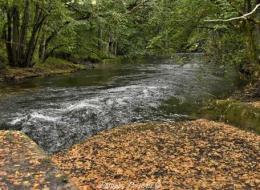 Prise d'eau sur l' Yonne