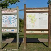 Forêt des Bertranges Arboretum - Patrimoine forestier