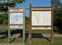 Forêt des Bertranges Arboretum