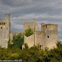 Château de Passy les Tours - Château Fort