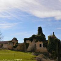 Château Chandioux de Maux