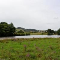 Petit lac de Pannecière un beau Lac du Morvan